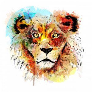 animal_lion1500_1