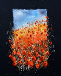 Poppies 676101