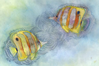 Plenty More Fish In The Sea