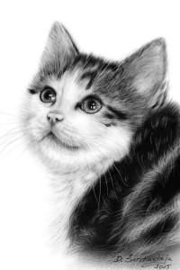 Kitty Ponder
