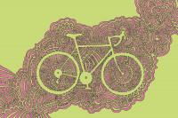 Bicycle 1 (Green/Pink)