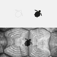 Square Turtle