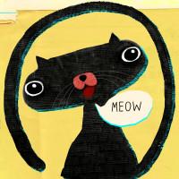 Cat - Meow